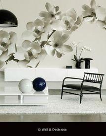 Forum scelti i mobili richiesta for Disegni da parete